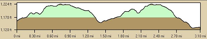 First Night Course Profile